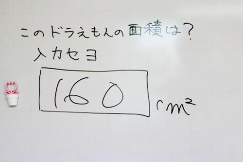 img_2076_800_512.jpg